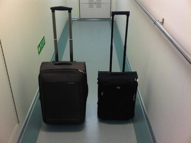 одна большая сумка для багажа и средний размер для ручной клади